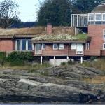 Met de jaren wordt de tuin op het dak gevarieerder!